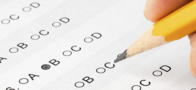 E. None of the above – The Burden of Standardized Testing